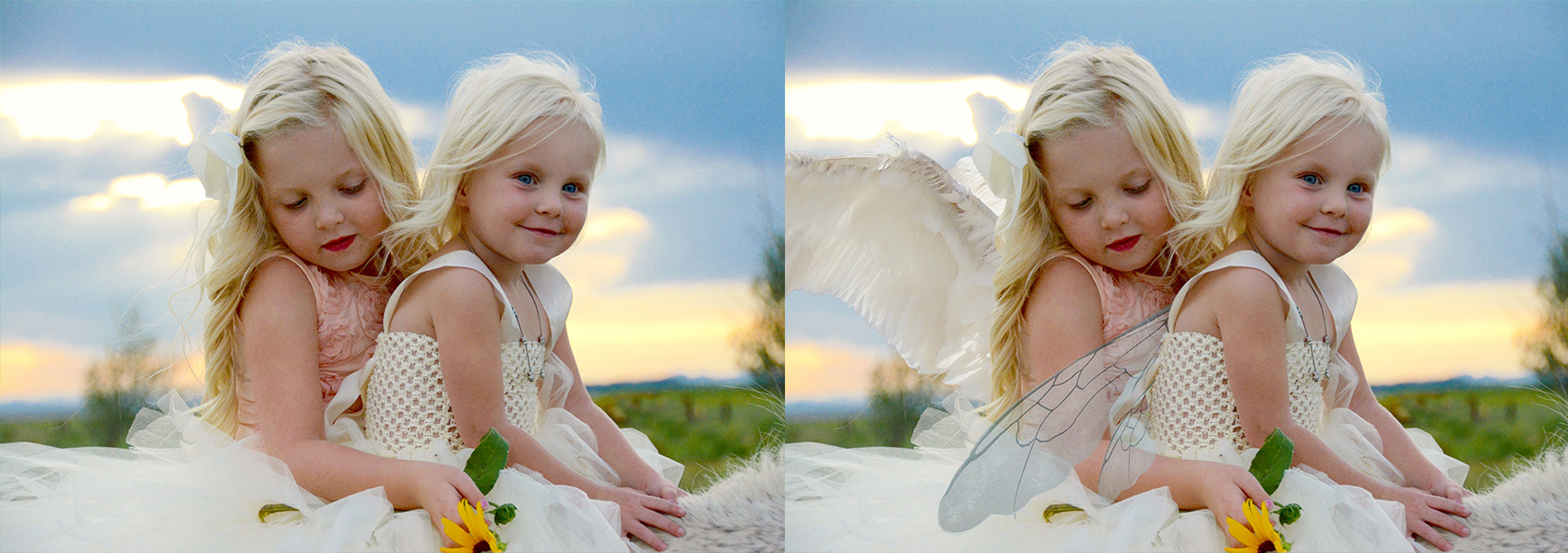 Sophie Fairy Morgan Angel